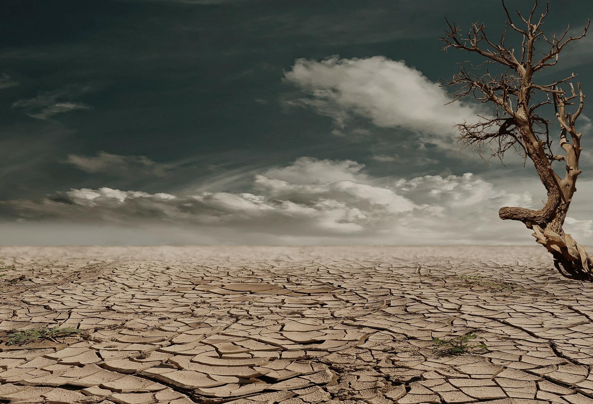 Trockener Wüstenboden